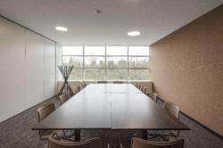 TRIOMPHE Salle de réunion